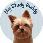 My Study Buddy
