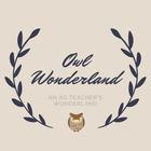 Owl Wonderland