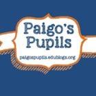 Paigo's Pupils
