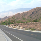 Palm Springs Lesson Plans