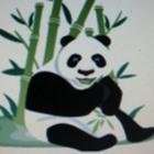 Panda DMC