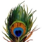 Peacock Projects