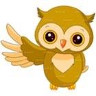 PreK Owlet
