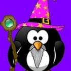 Primary Wizard