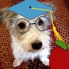 Professor Petey's Plans