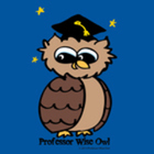 Professor Wise Owl