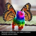 Rainbow Kitten Unicorn
