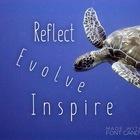 Reflect Evolve Inspire