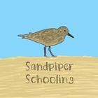 Sandpiper Schooling
