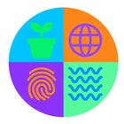 Somewhere To Share