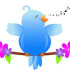 Songbird Resources