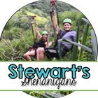 Stewart's Shenanigans