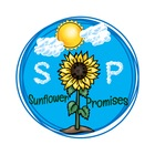 Sunflower Promises