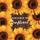 Sunflower to Sunflower