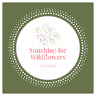 Sunshine for Wildflowers