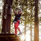 TeachasaurusRex