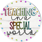 Teaching In A Special World