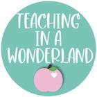 Teaching in a Wonderland