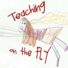 Teaching on the Fly