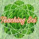 Teaching Sci