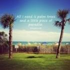 Teaching Under A Palm Tree