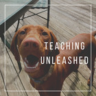 Teaching Unleashed