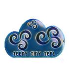 Teeny Tiny TEFL
