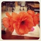 The Blooming Teacher's Desk