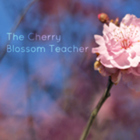The Cherry Blossom Teacher