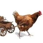 The Chickenwagen Creation Wagon