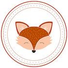 The Classroom Fox