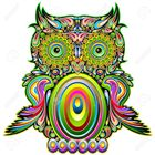 The Crafty Owl 2