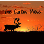 The Curious Moose