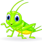 The Learning Bug