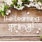 The Learning Spring