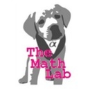 The Math Lab