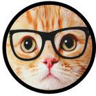The Maths Cat