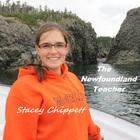 The Newfoundland Teacher