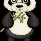 The Panda Teacher