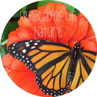 The Poem Patch