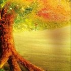 The Radley Tree