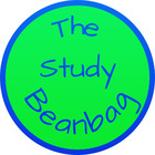 The Study Beanbag