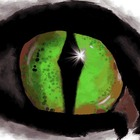 The Teacher Eye
