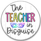 The Teacher in Disguise