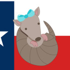 The Texas Teachin' Armadillo