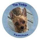 The Yorkie Teacher