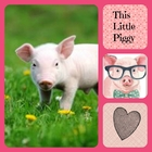 This Little Piggy Love