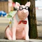 This Smart Little Piggy