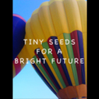 Tiny Seeds For A Bright Future