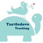 Turtledove Teaching